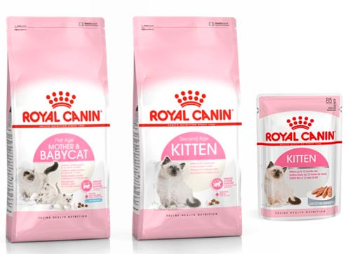 Корм Royal Canin для котят